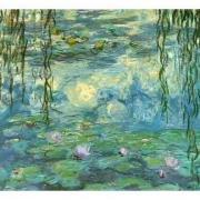 Monet16