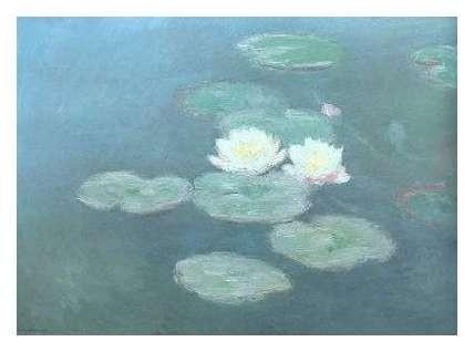 Monet47